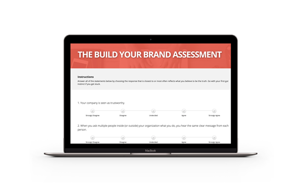 Screenshot of brand assessment